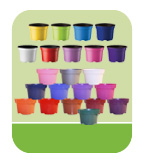 Coloured Pots