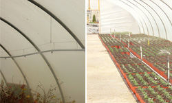Overhead Irrigation for Tunnels