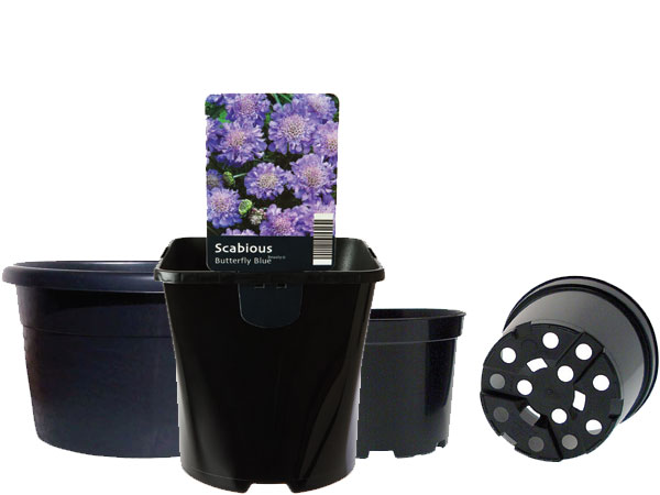 Growers Containers & Pots