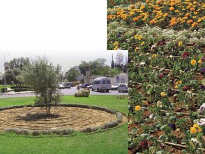 Deker Hort Irrigation Gardenline