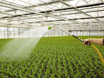 Deker Hort Irrigation Hand Watering