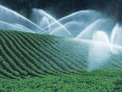 Deker Hort Sprinker Irrigation Outdoor Beds